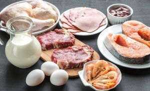 36061131 - protein diet products