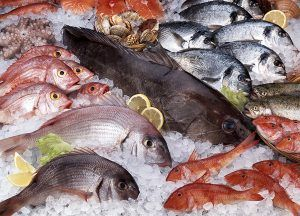 Variety of raw fresh fish,salmon,octopus,red mullets,gilt-head breams,pagellus,sea breams,trouts,crustacean,etc.