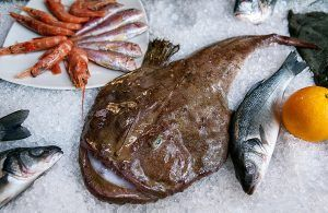 Monkfish or fishing-frogs, frog-fish, sea-devils, angler. Fresh fish from Adriatic Sea lies on ice. Rich of vitamins A, D, sea salt, protein, amino acids, low in fat. Perfect for diet, healthy lifestyle